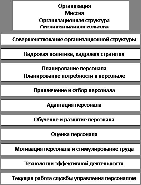 В книге подробно рассматриваются функции кадровой службы организации